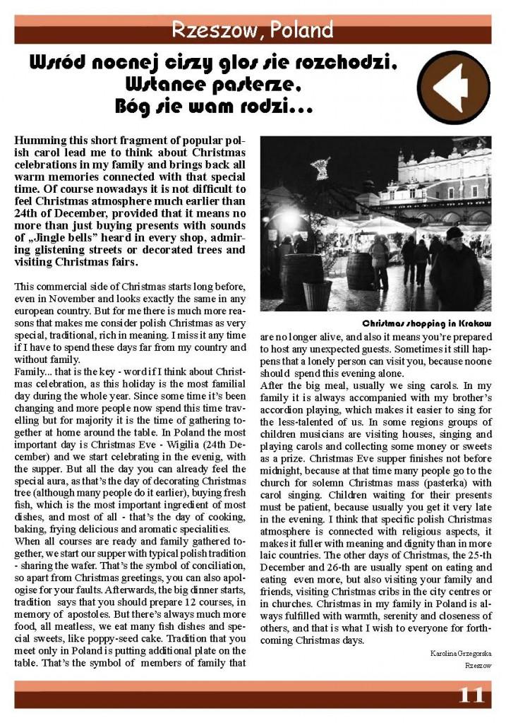 2008november16_Page_11