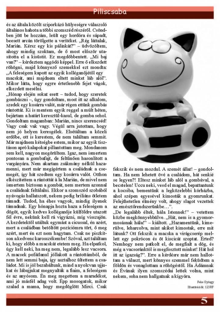2009junius_Page_05